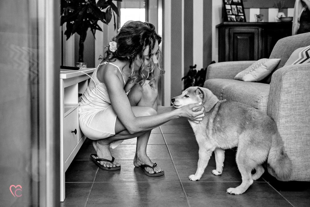 matrimonio a Torino e Cortanze, preparazione sposa, cagnolino