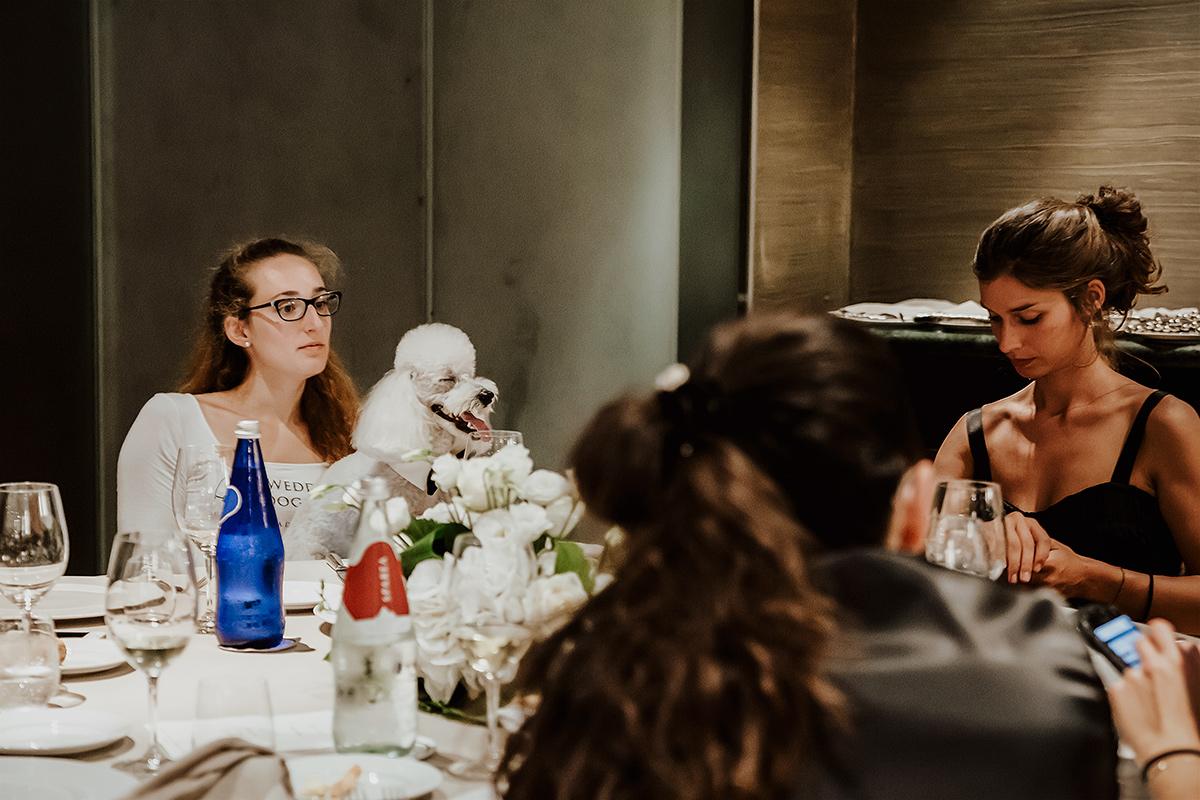Matrimonio al castello di Grnzane Cavour, Langhe, Piemonte, ricevimento al Boscareto resort. Cane barboncino degli sposi con la wedding dog sitter Martina Ossola
